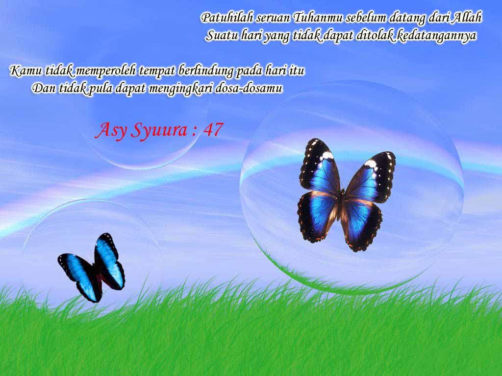 http://3.bp.blogspot.com/-MVp4ojVag9g/Tpvpfv__CfI/AAAAAAAAAaI/J-DJwHvyUKU/s1600/Quran_Quotes_wallpaper.jpg