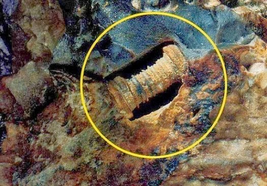 A 300 Million Year Old Screw? Researchers Baffled
