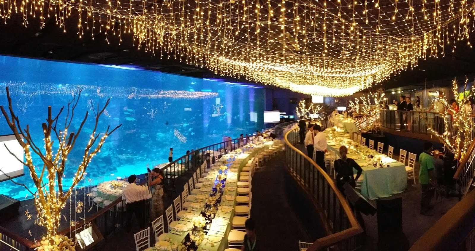 So Here Are Some Reasons Why You Should Totally Hold Your Wedding At The Rws Sea Aquarium If Hen To Be Pretty Rich