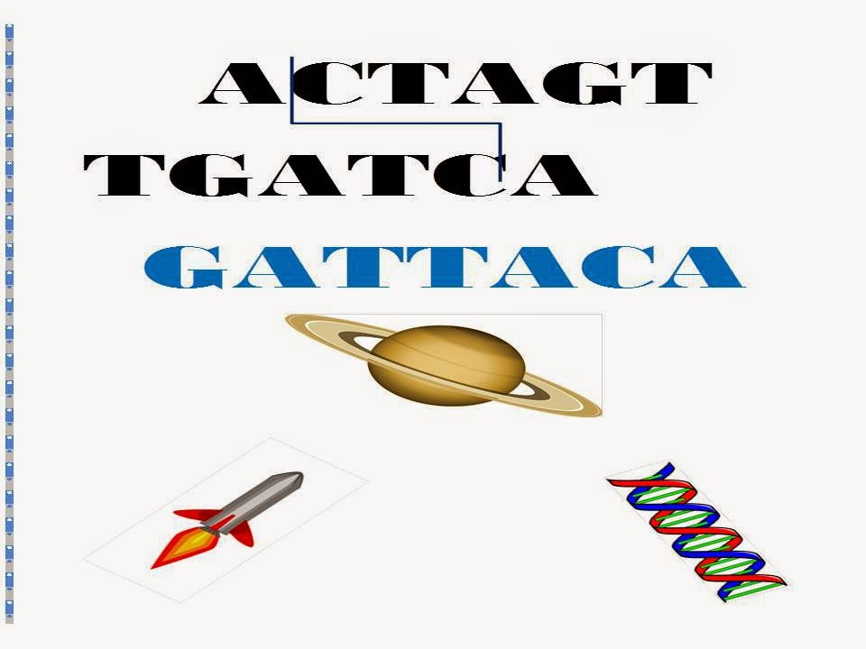 an analysis of the film gattaca by andrew niccol A web page featuring information about gattaca directed by andrew niccol, gattaca (also known as eighth day, the, gattaca - la porta dell'universo) is a drama/science fiction/thriller film, released on october 24 of 1997 in the usa , starring ethan hawke, uma thurman, jude law, loren dean.