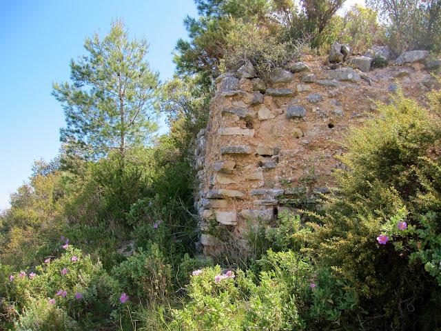Castell de Carbonera. Benicadell, Otos