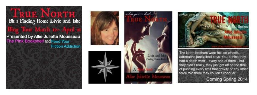 http://www.amazon.com/Allie-Juliette-Mousseau/e/B00CBIZ52M/?_encoding=UTF8&camp=1789&creative=390957&linkCode=ur2&qid=1394486223&sr=1-2-ent&tag=yohameatfrbo-20