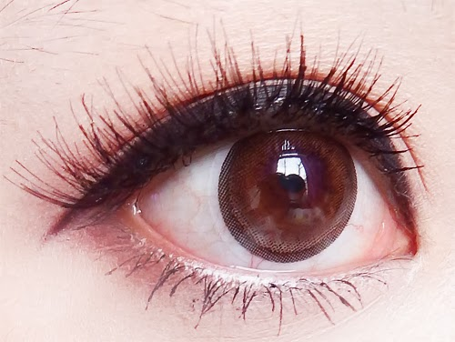 Dolly Eye Dizon Eye Brown colored contacts