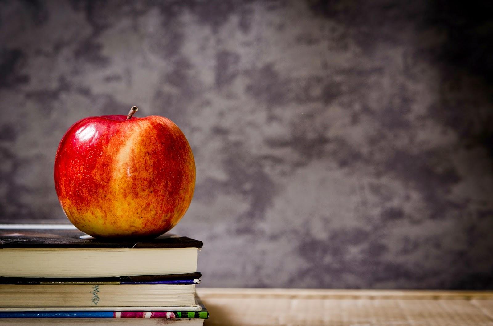 Γνώση για όλους: πάνω από 380 μαθήματα από 12 Ακαδημαϊκά ιδρύματα