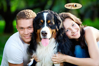 http://lupusalimentos.com.br/wp/?p=365