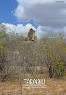 Tarairiú Nº11 clique na imagem