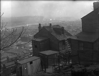 South Side Slopes chicken run, 1918, Pittsburgh