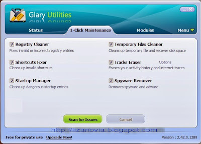 software for maintenance, glary utilities