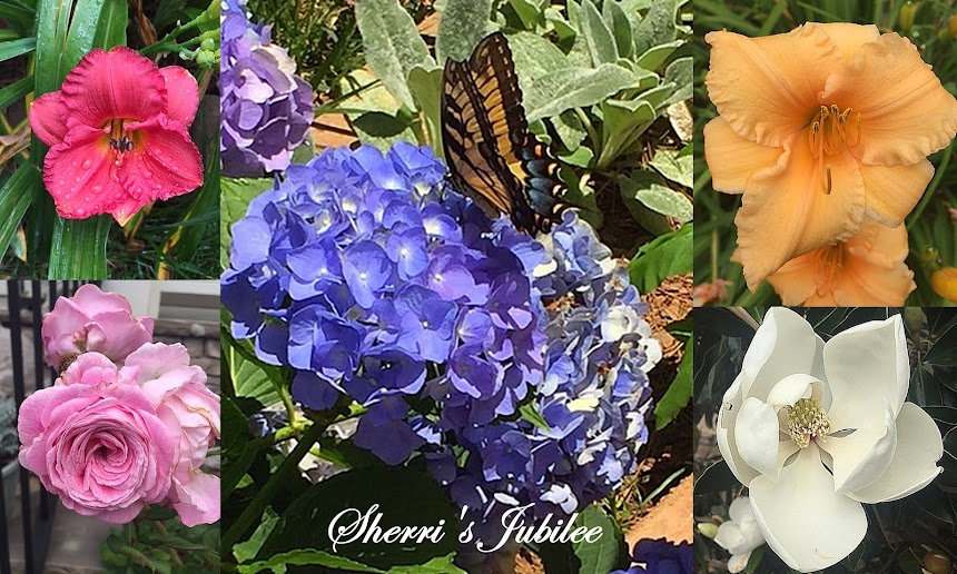 Sherri's Jubilee