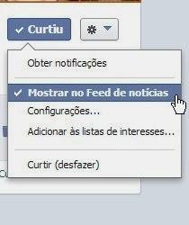 """Opção """"Mostrar no Feed de notícias"""" marcada"""