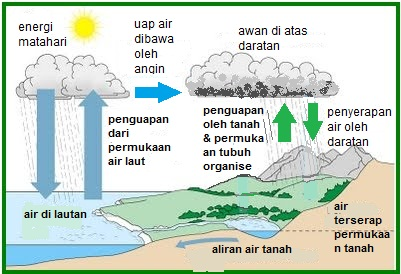 A blog to remember daur biogeokimia a blog to remember ccuart Image collections