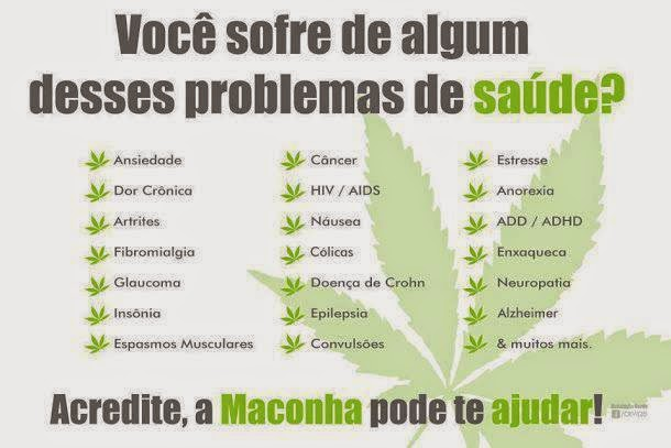 MACONHA MEDICINAL CURA .