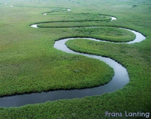 Okavango Delta do Botswana