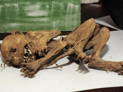 Encontrado esqueleto, que dizem ser de suposto