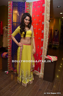 Shahzahn%2520Padamsee%2520Hot%2520Belly%2520Button%2520Pics%2520-%2520bollybreak_com_DSC_8437.jpg