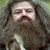 Pottermore: ''A perspicácia e sabedoria de Rúbeo Hagrid''