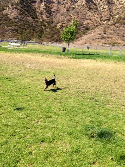 Corriganville Park - Simi Valley, CA - Yelp