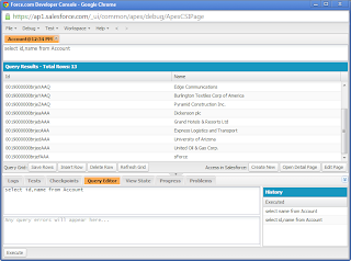 SalesForce Developer Console Step3