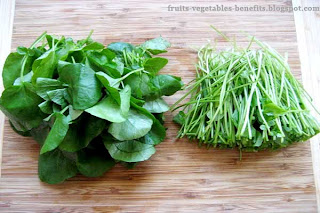benefits_of_eating_watercress_fruits-vegetables-benefits.blogspot.com(2)