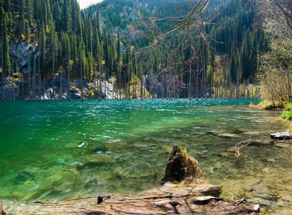 Lake kaindy – kazakhstan's sunken forrest