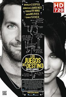 Ver El lado bueno de las cosas (Silver Linings) (2012) Online