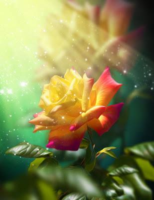 La rosa más hermosa del mundo by Svetlana Sewell