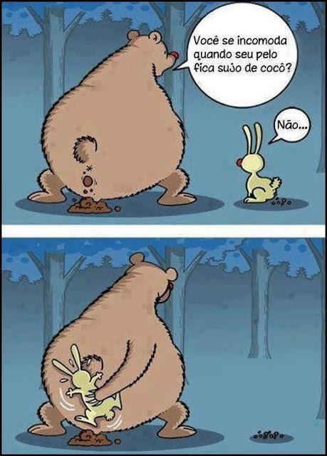 Urso limpa o cócó ao coelho