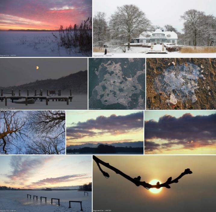Bagsværd Sø – Winter