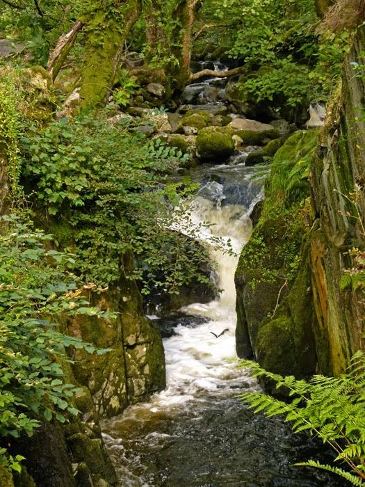 Aira Beck, Cumbria, English Lakes
