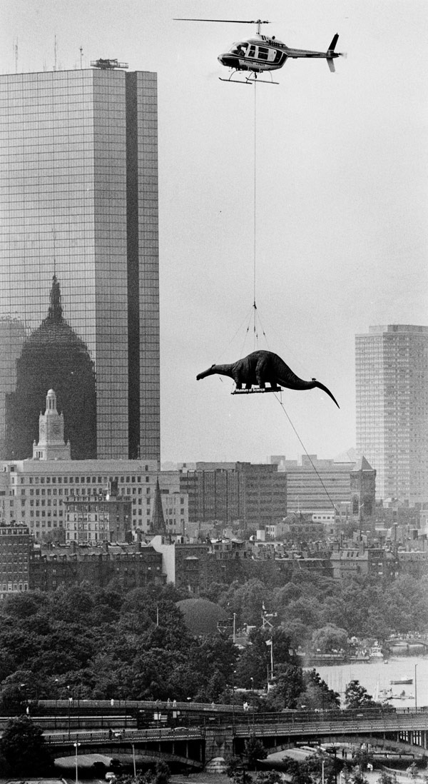 dinosaurio helicoptero. Boston