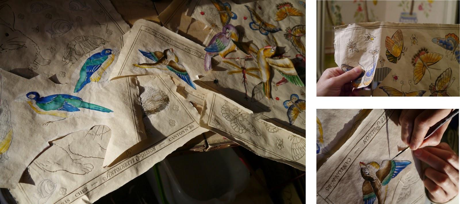 Papier Peint Oiseaux Anglais - Papier peint vert motif d'oiseaux Hummingbirds Cole and