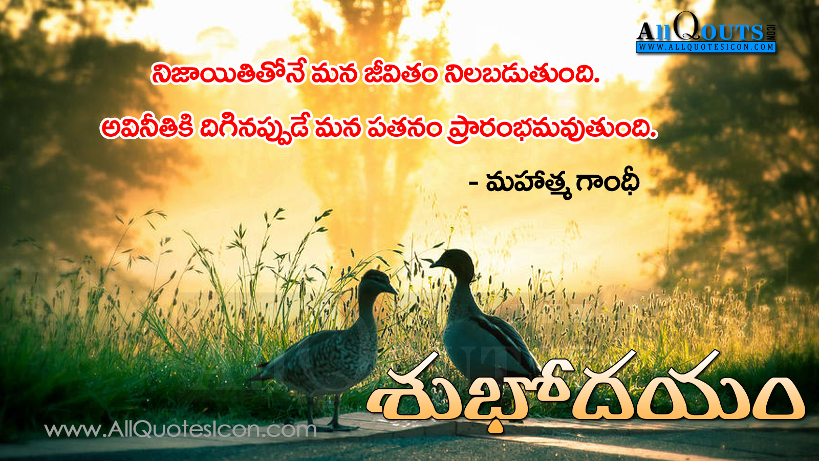 Good Morning Quotes Goodreads : Good morning greetings and images telugu quotations with