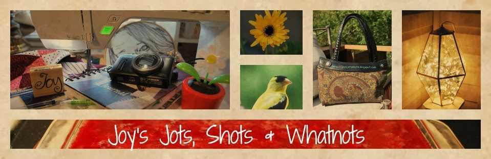 Joy's Jots, Shots & Whatnots
