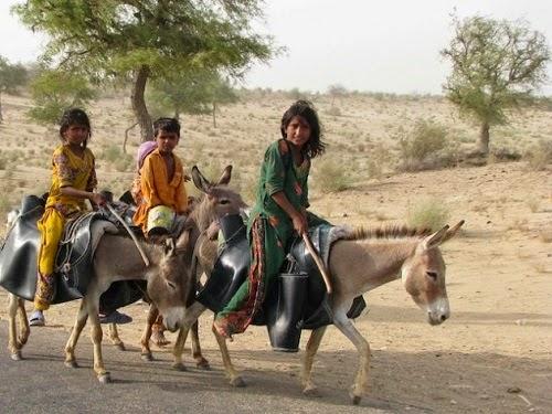Tharparkar_Pakistan_drought_2015
