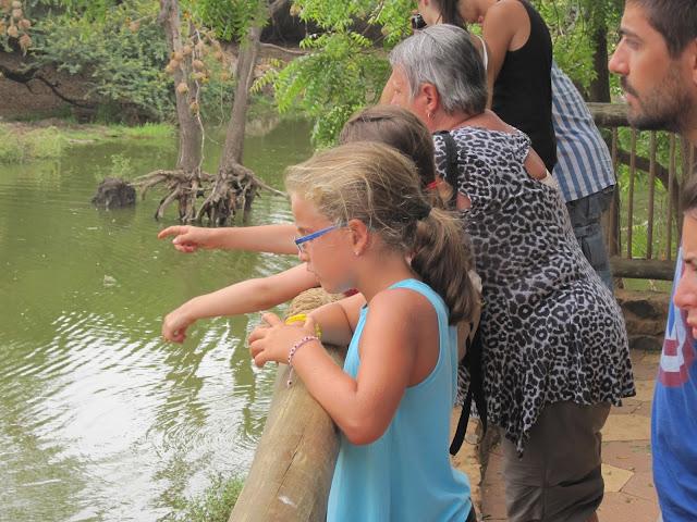 Macarena observando los cocodrilos en Bandia, Senegal