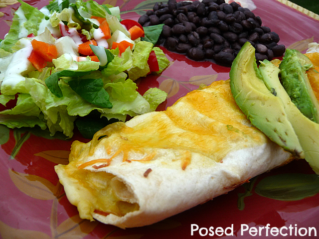 Chicken Enchiladas 2 Ways by Posed Perfection
