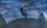 Wolf's Rain, Gunbuster, Dybex, Gainax, Bones, Actu Japanime, Japanime,