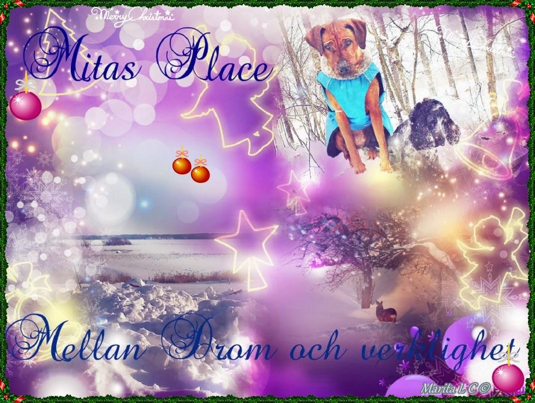 Mitas Place drömmar och verklighet