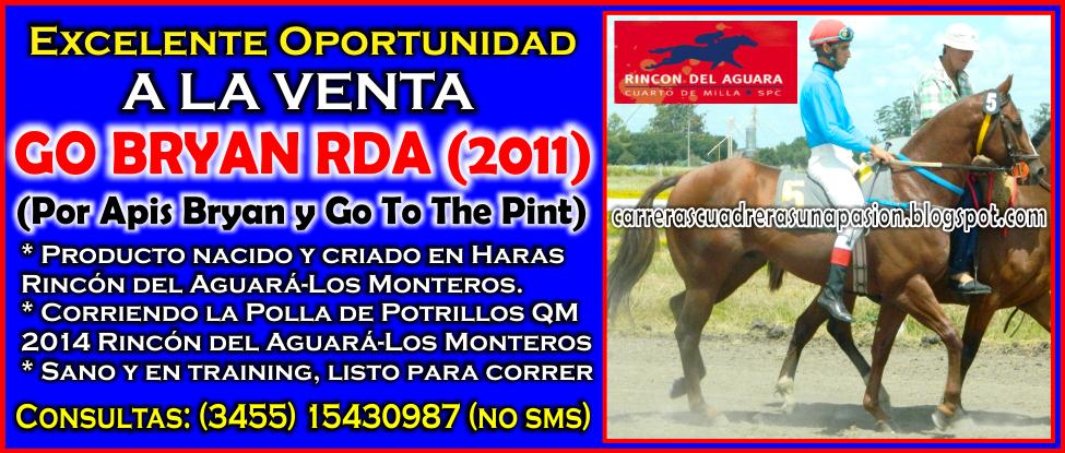 VENTA - GO BRYAN - 14.09.2014