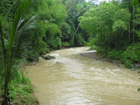 Wudlu Di Sungai Yang Ada Kotoran Manusia
