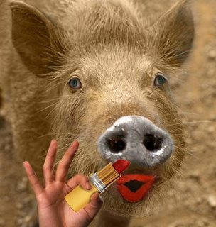lipstick on pig