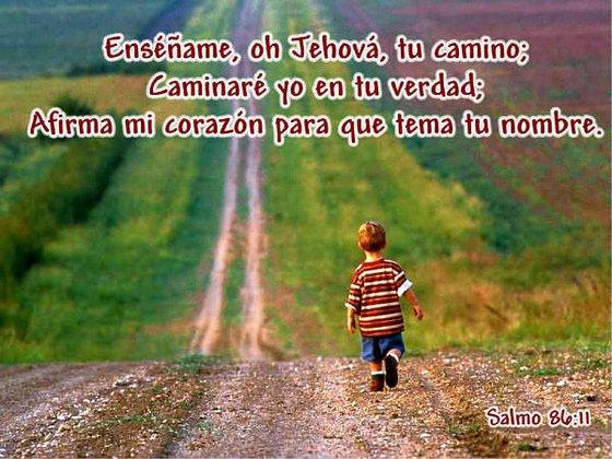 Siempre en Tu Camino