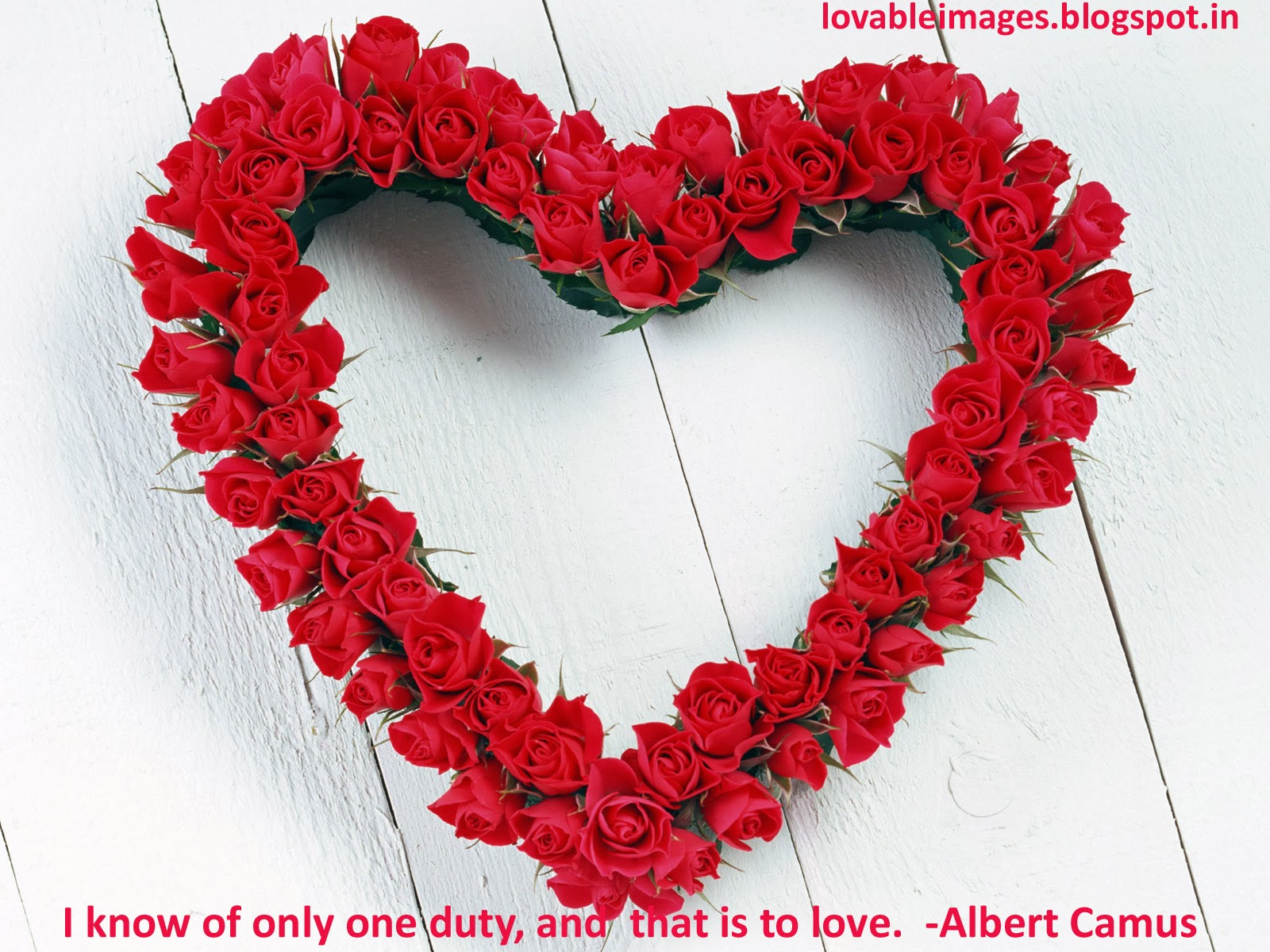 valentines day images with quotes hd - Lovable Best Valentine s Day Love Quotes With HD