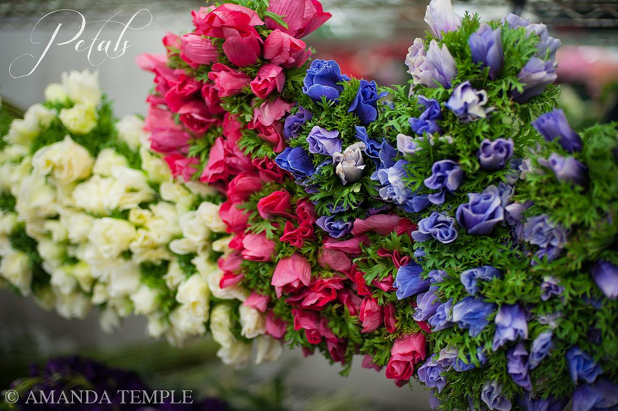 Petals Bermuda Florist The New York Flower Market