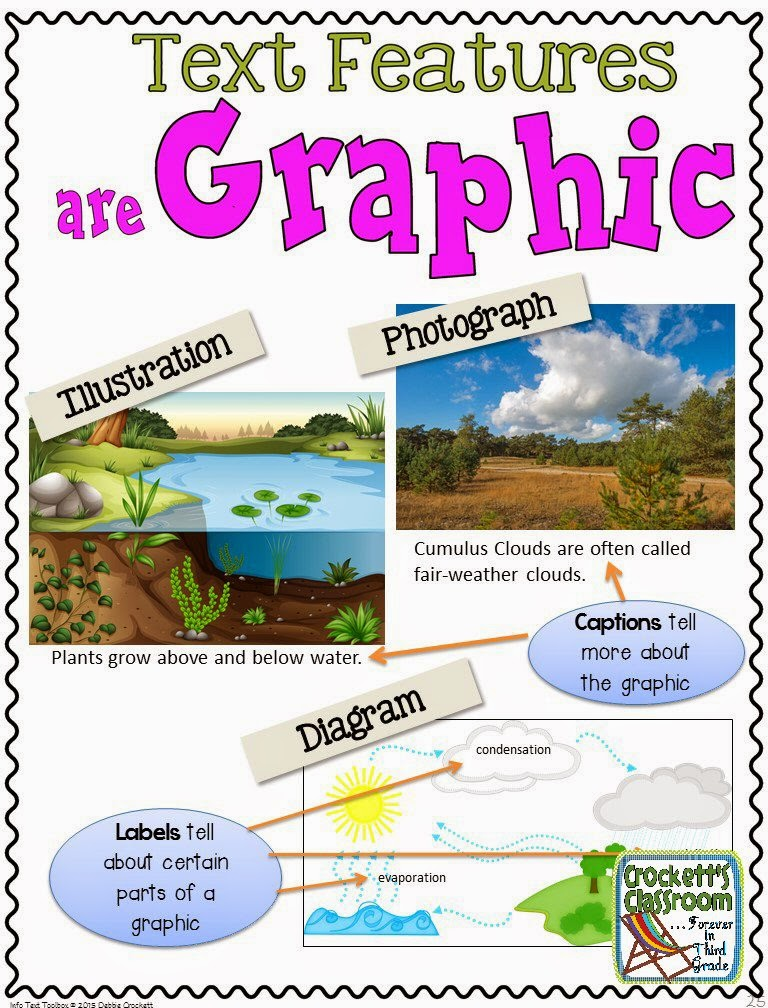 Non-Fiction Text Features Organizer and Scavenger Hunt (feedback ...