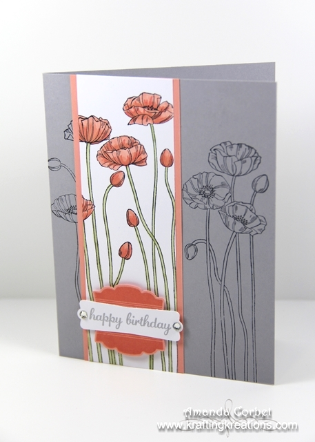 Birthday Poppies