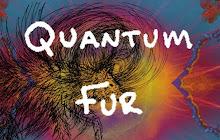 Studio 303/ Quantum Fur