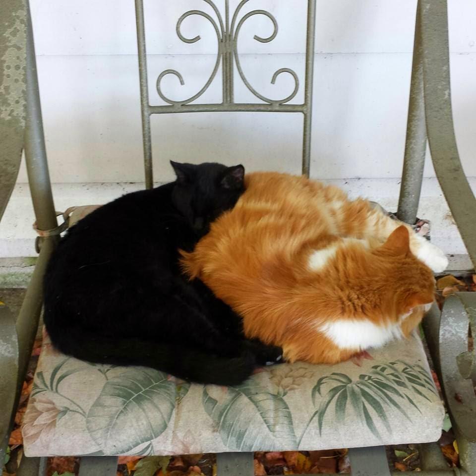 Gasper & Charlie
