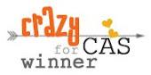 winnaar CAS challenge #15, #22, #26, #33, #53, #58