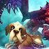 World of Warcraft : New Pet